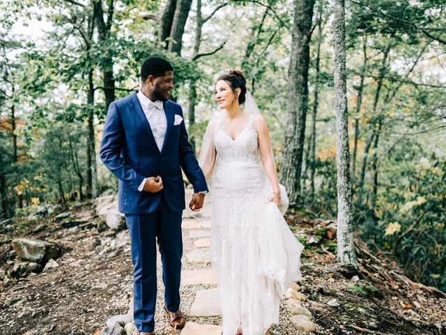Aubrey and Laura's Wedding in Pigeon Forge, Tennessee 22