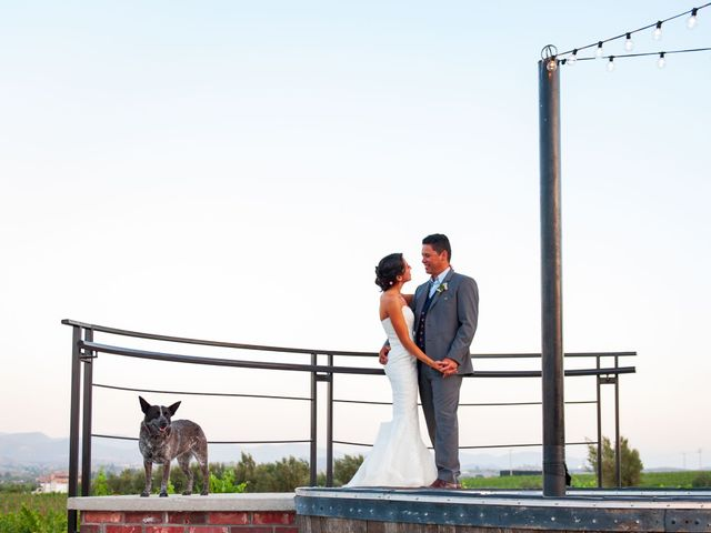 Alex and Michelle's Wedding in Valle de Guadalupe, Mexico 6