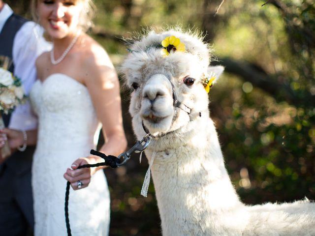 Aaron and Sinead's Wedding in Murrieta, California 42