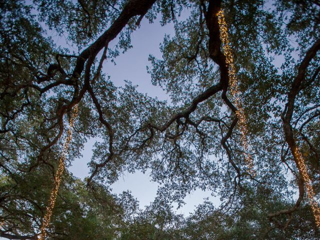 Jennifer and Sam's Wedding in Dripping Springs, Texas 18