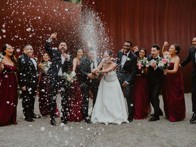Daniel and Nerissa's Wedding in Seattle, Washington 2
