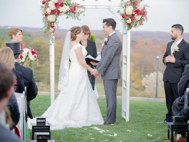 Rawad and Caitlin's Wedding in Joppa, Maryland 4