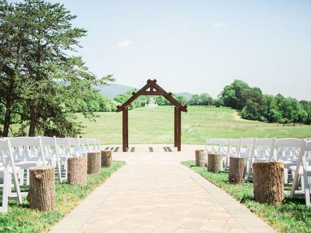 Casey and Alan's Wedding in Blue Ridge, Virginia 3