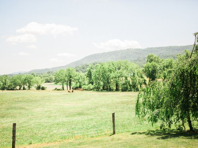 Casey and Alan's Wedding in Blue Ridge, Virginia 4