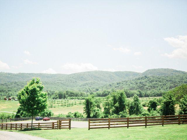 Casey and Alan's Wedding in Blue Ridge, Virginia 6