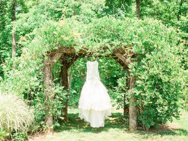 Casey and Alan's Wedding in Blue Ridge, Virginia 7