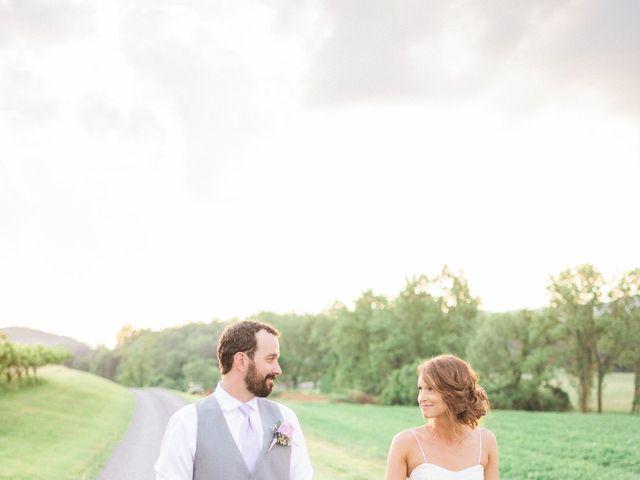 Casey and Alan's Wedding in Blue Ridge, Virginia 31