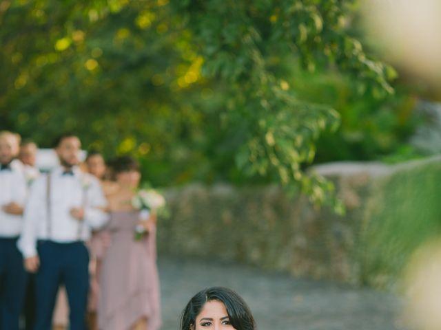 Anush and Carolyn's Wedding in La Romana, Dominican Republic 67