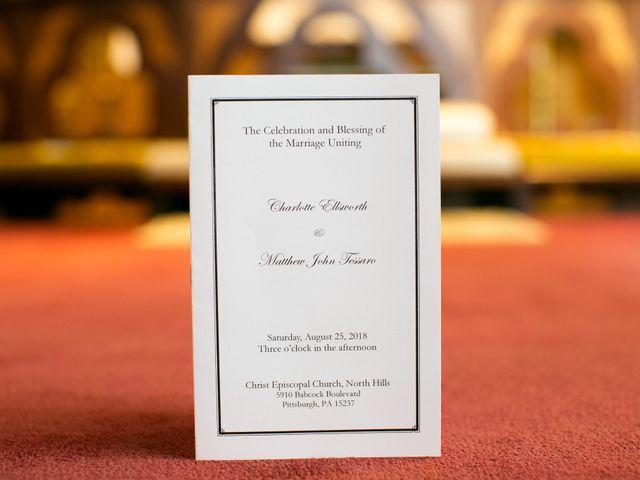 Matthew and Charlotte's Wedding in Pittsburgh, Pennsylvania 14