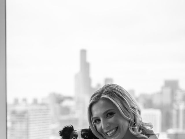 Dan and Ashley's Wedding in Chicago, Illinois 13