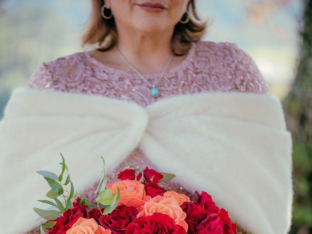 Roxanna and Linda's Wedding in Asheville, North Carolina 5