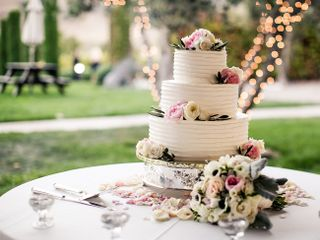 Stephanie and Cameron's Wedding in Sonoma, California 19