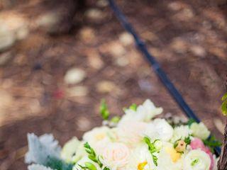 Stephanie and Cameron's Wedding in Sonoma, California 9