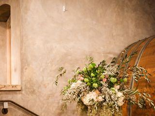 Stephanie and Cameron's Wedding in Sonoma, California 11