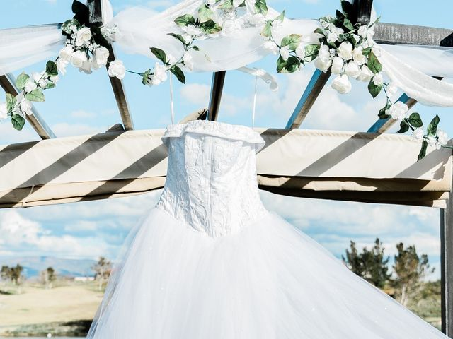 Dominic and Kayla's Wedding in Fort Mohave, Arizona 11