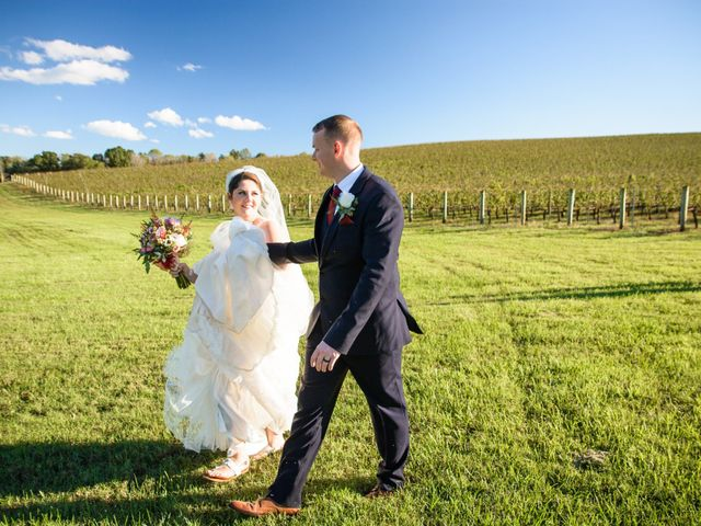 Doug and Annie's Wedding in Charlottesville, Virginia 3