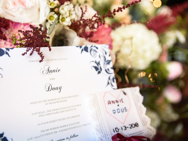 Doug and Annie's Wedding in Charlottesville, Virginia 10