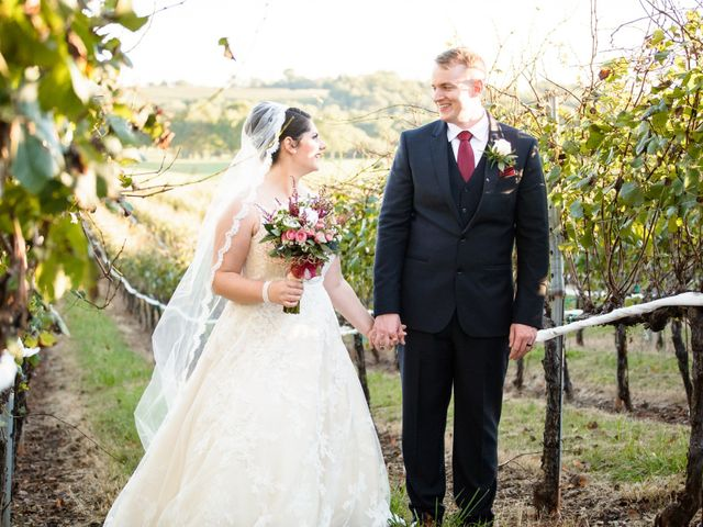Doug and Annie's Wedding in Charlottesville, Virginia 17