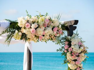 The wedding of Tanisha and Craig 1