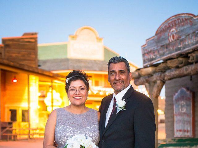 Ray and Laura's Wedding in Tucson, Arizona 7