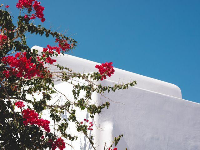 Hannah and Jad's Wedding in Mykonos, Greece 1
