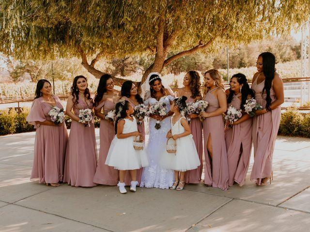 Gino and Ciara's Wedding in Vacaville, California 11