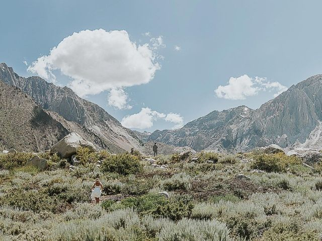 Chris and Olivia's Wedding in Mammoth Lakes, California 1