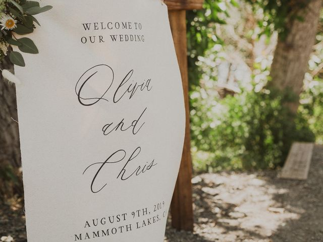 Chris and Olivia's Wedding in Mammoth Lakes, California 38