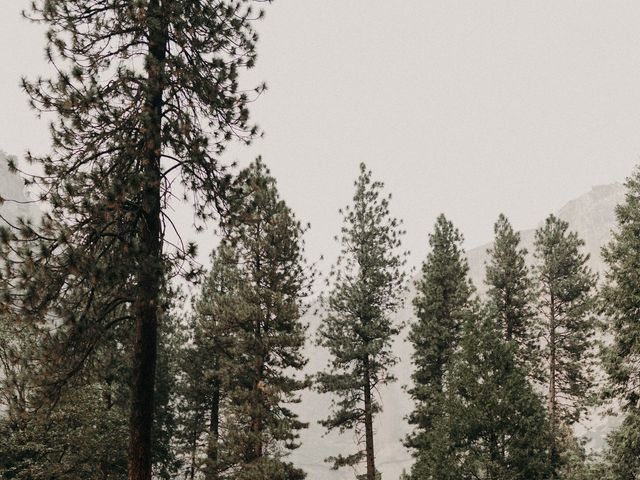 Dallas and Madison's Wedding in Yosemite National Park, California 8