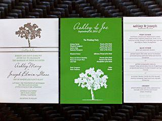 The wedding of Joe and Ashley 2