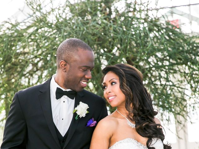Raqaq and Lisa's Wedding in Homer Glen, Illinois 11