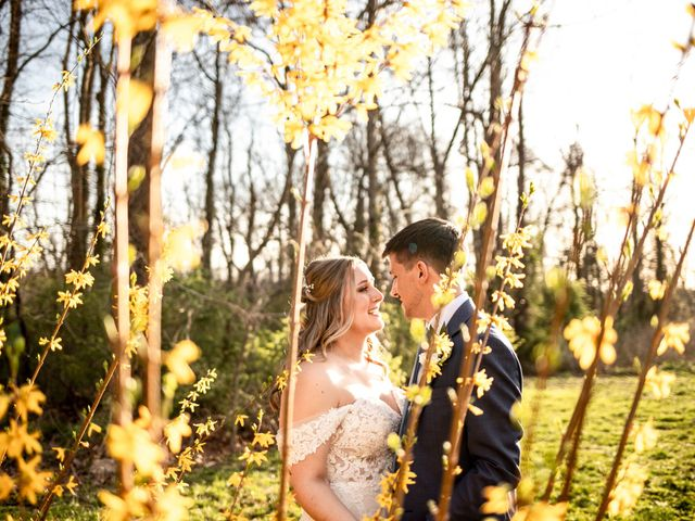The wedding of Hannah and Steven