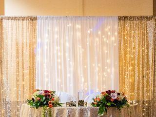 Chris and Anusha's Wedding in Saint Petersburg, Florida 21