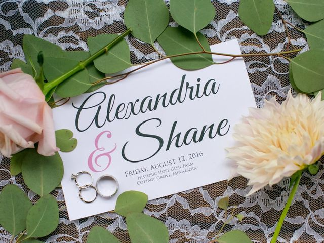 Shane and Ali's Wedding in Cottage Grove, Minnesota 42