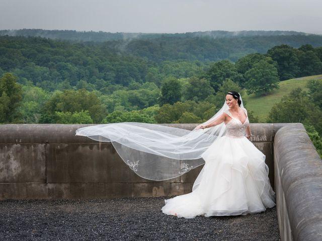 David and Julia's Wedding in Asheville, North Carolina 25