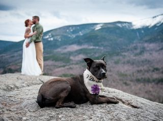 The wedding of Amy and Wendel 2