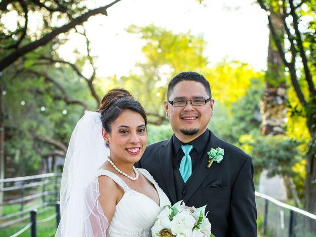 Candace and George's Wedding in Tucson, Arizona 3