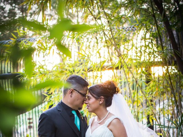 Candace and George's Wedding in Tucson, Arizona 5