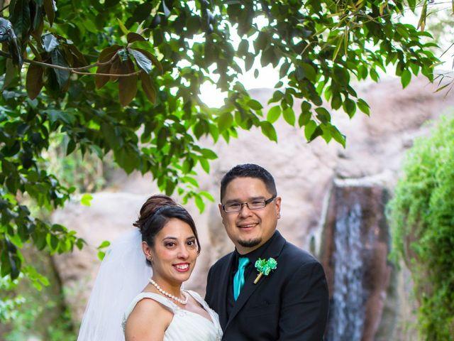 Candace and George's Wedding in Tucson, Arizona 7