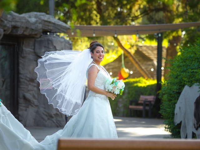 Candace and George's Wedding in Tucson, Arizona 15