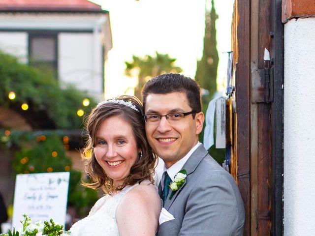 Emily and Jason's Wedding in Tucson, Arizona 28