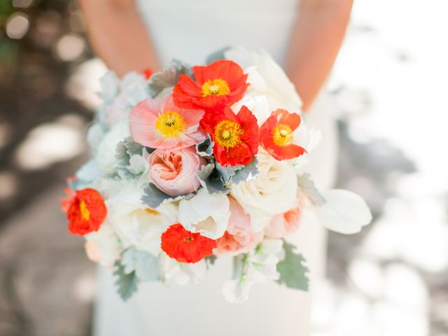 Mollie and Shawn's Wedding in Santa Barbara, California 2