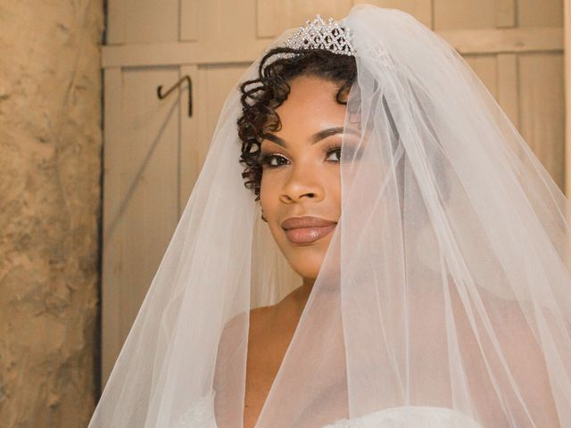 Antwan and Sarah's Wedding in Ellicott City, Maryland 13