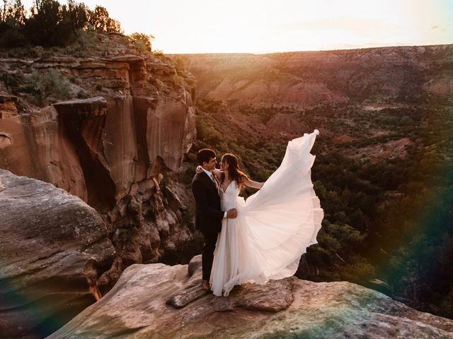 The wedding of Rebekah  and David