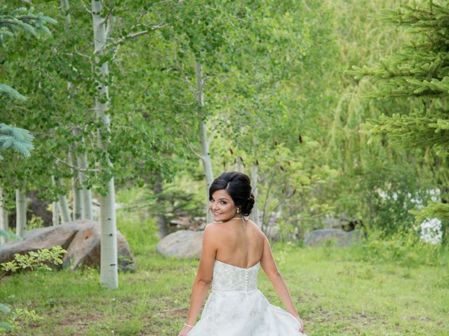 Alina and Michael's Wedding in Munds Park, Arizona 4