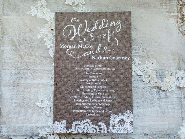 Morgan and Nathan's Wedding in Christiansburg, Virginia 6