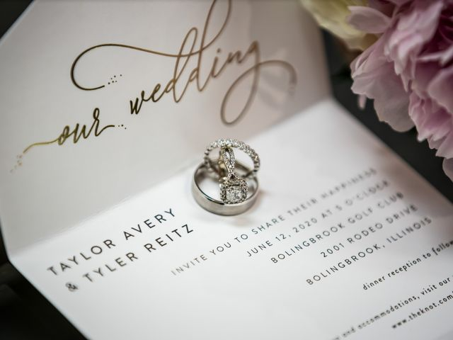Tyler and Taylor's Wedding in Bolingbrook, Illinois 4