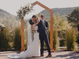 The wedding of Dana and Tevan 1