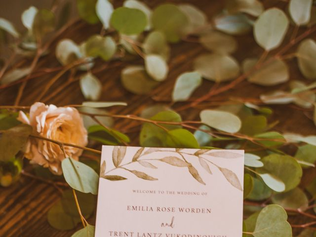 Trent and Emma's Wedding in Burlington, Wisconsin 5