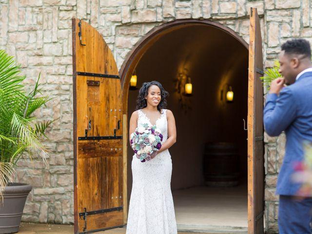 Hassan and Alexandra's Wedding in Fredericksburg, Virginia 16